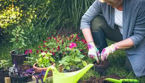 5 Health Benefits of Gardening and Planting